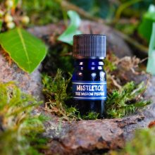 Druidské stromové parfumy